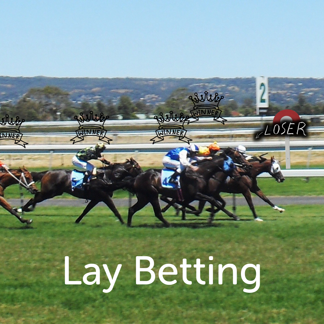 Lay Betting on the Horses